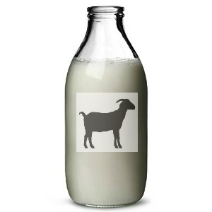 The Truth About Infant Goat Milk